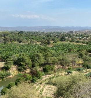 Portoviejo River
